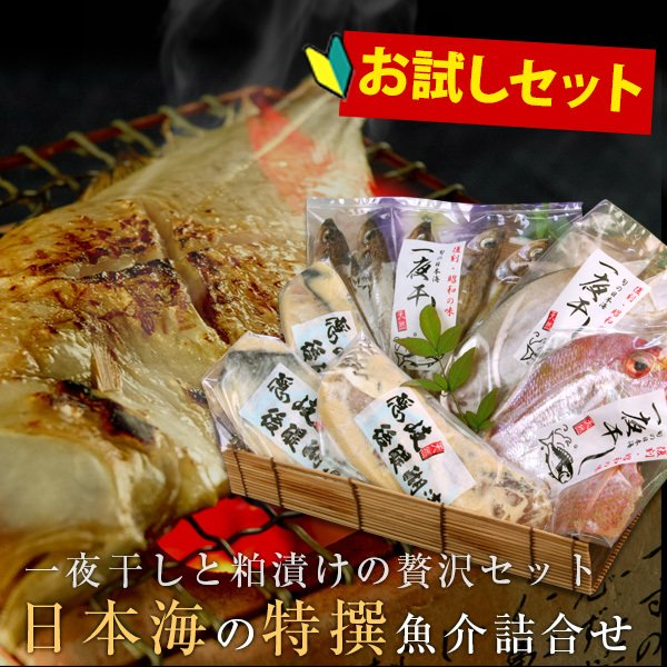 日本海の特撰魚介お試しセット ご自宅用簡易パッケージ 公式通販 人気の製品 送料無料 沖縄を除く 北海道