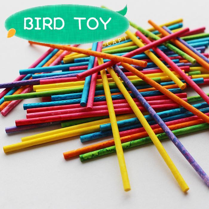 SALE開催中 CAP 鳥のおもちゃ パーツ スモール 超激安特価 20g ミックス ロリポップ スティック