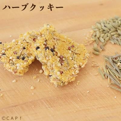 CAP 鳥の餌 賞味期限2022 1 公式 31 ハーブクッキー 20g Sunny Kitchen SALE開催中