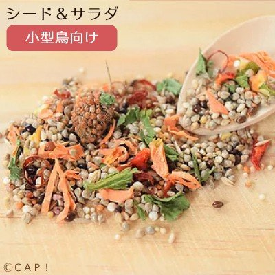 CAP 鳥の餌 即納最大半額 本物 賞味期限2022 2 28 Sunny サラダ Kitchen 80g シード 小型鳥向け