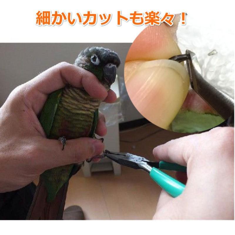小鳥用ツメ切り(インコ・オウム用爪切り) ・小鳥専門の動物病院でも使用 torippie 02