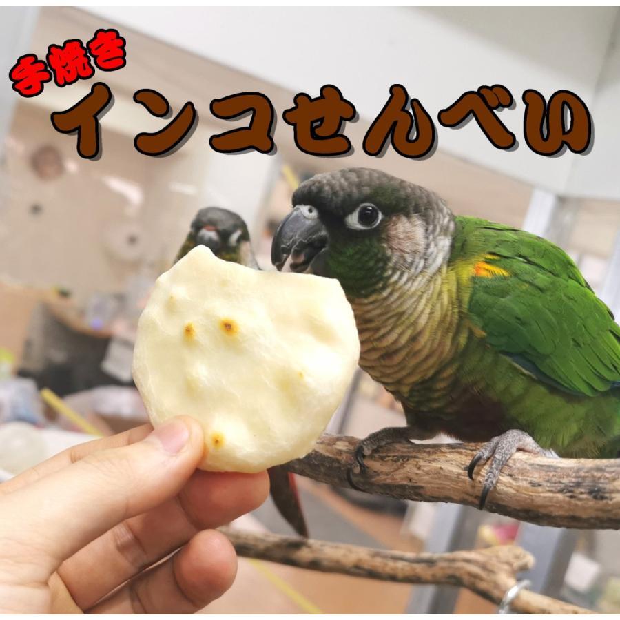 小鳥のための手焼きおせんべい 1枚入 当店一番人気 インコのお煎餅 爆売りセール開催中