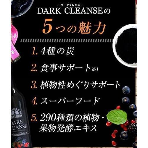 DARK CLEANSE ダーククレンズ 710ml 最新チャコールドリンク 健康 美容 便通 熱中症対策 コンブチャ|tornade-store|05