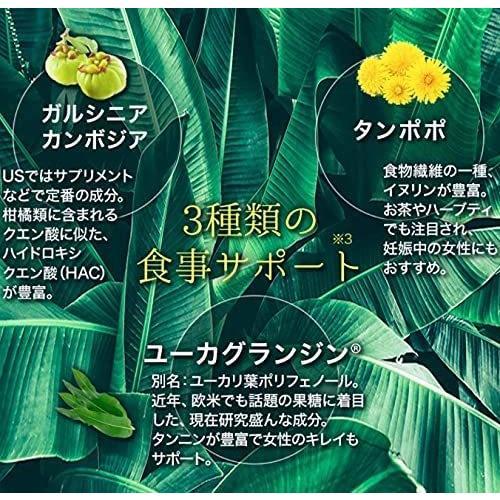 DARK CLEANSE ダーククレンズ 710ml 最新チャコールドリンク 健康 美容 便通 熱中症対策 コンブチャ|tornade-store|07