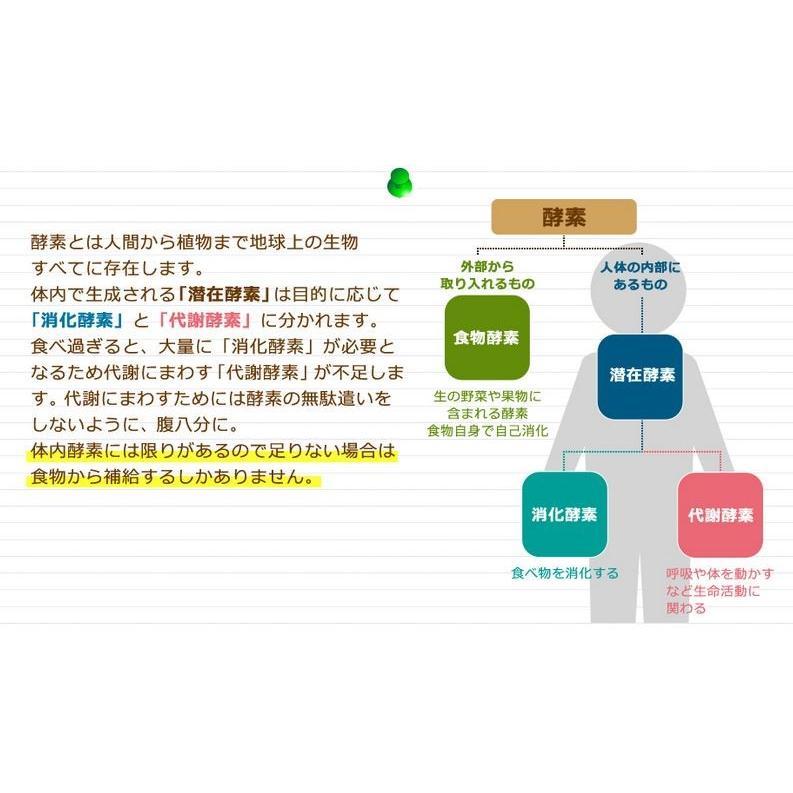 まるっと超熟生酵素 2袋 セット サプリメント|tornade-store|02