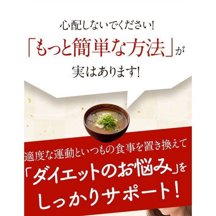 ドクター味噌汁 Dr.味噌汁 30袋 置き換えダイエット サプリメント 健康食品|tornade-store|03