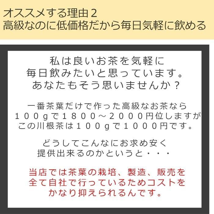 緑茶 茶葉 食べる まとめ買い10%割引!令和3年度新茶【生真面目茶師が作った川根茶100g10袋セット】|toshinsabo|06