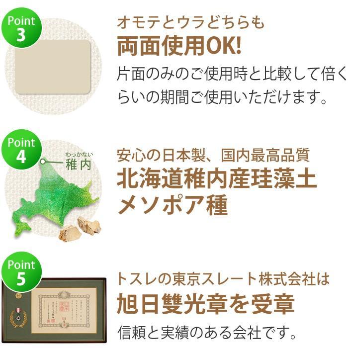 トスレ 北海道稚内産珪藻土マット スクエアモダンドットラインM tosle|tosle|10
