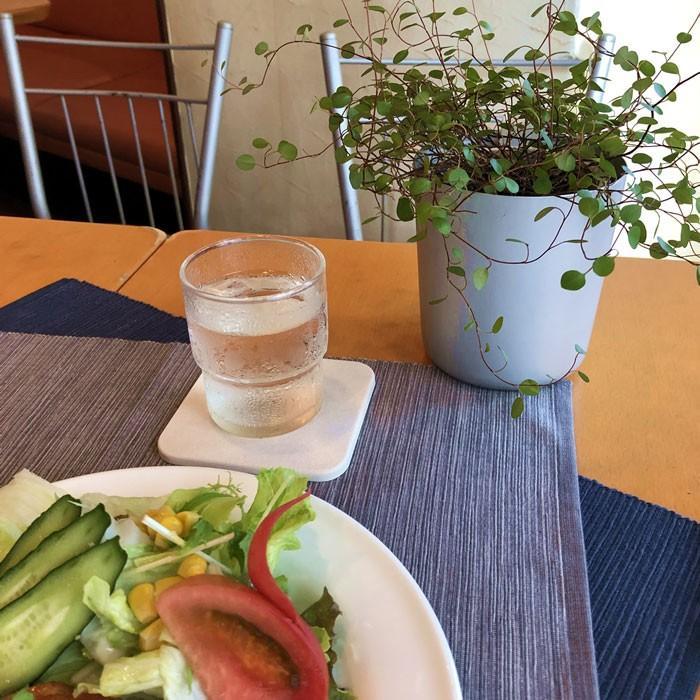 トスレ 北海道 珪藻土 コースター スクエア プレーン 2枚組|tosle|13