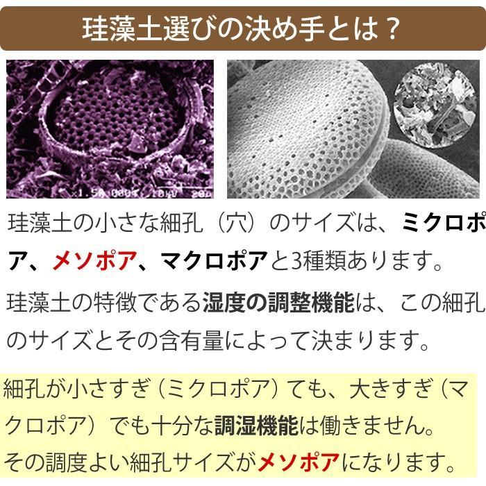 トスレ 北海道稚内産珪藻土マットミニ レギュラー RG regular tosle 14