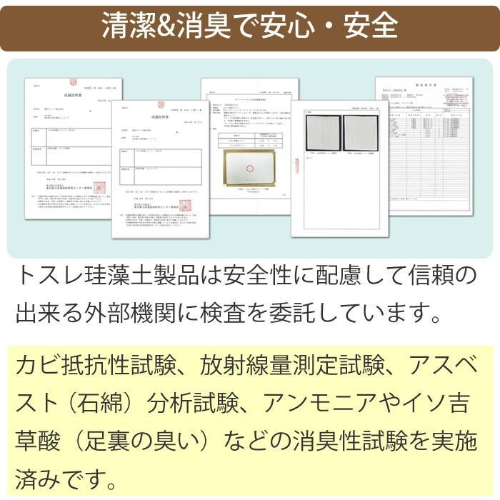 トスレ 北海道稚内産珪藻土マットミニ レギュラー RG regular tosle 16