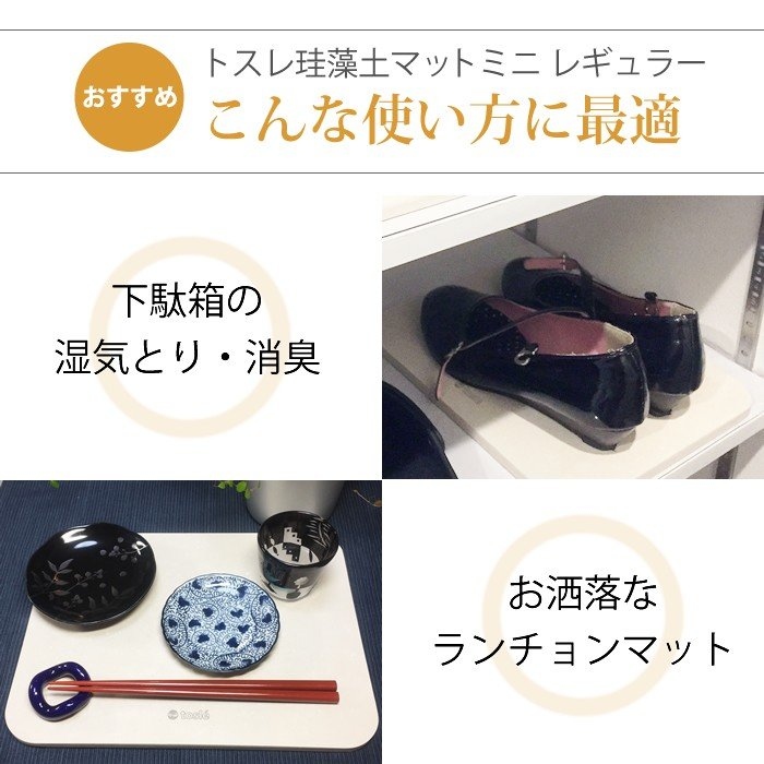トスレ 北海道稚内産珪藻土マットミニ レギュラー RG regular tosle 05