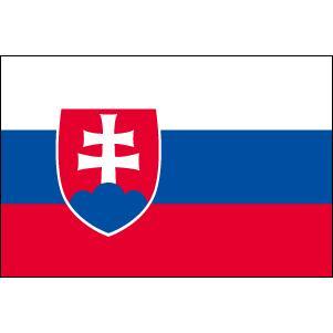【送料無料】 スロバキア国旗セット・高級アルミ合金パーツ付き