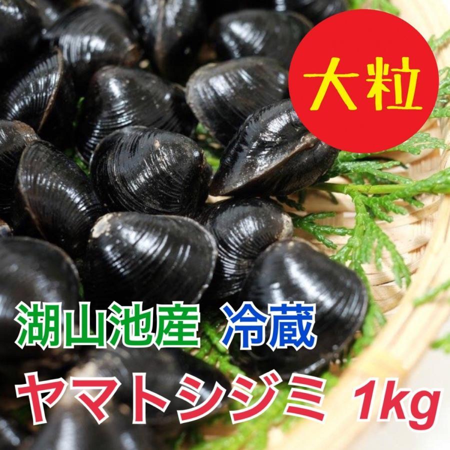 ヤマトシジミ(鳥取市湖山池産)1Kg|tottorishi-bussankan
