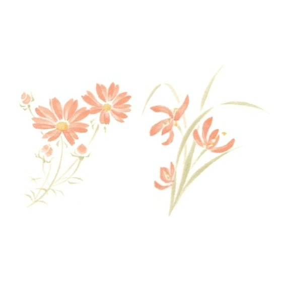 気質アップ 陶芸 下絵具 新作販売 下絵転写紙 ピンク コスモス 2色スイセン