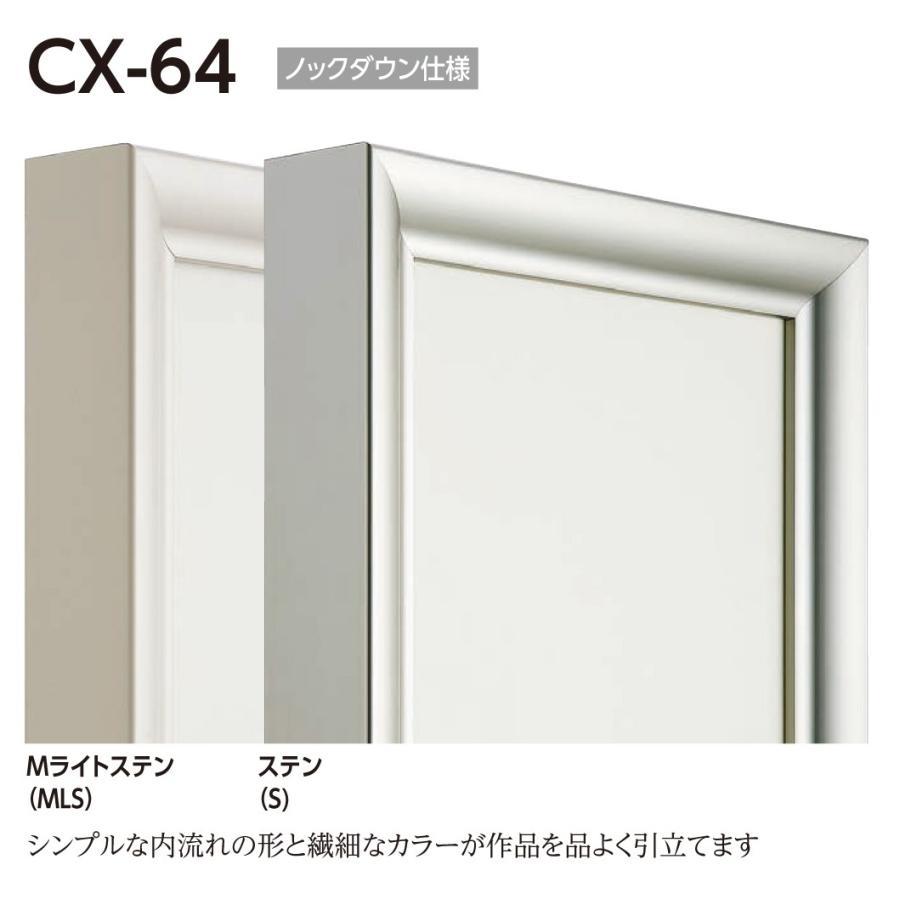 額縁 仮縁 油彩額 油絵額縁 仮縁 アルミフレーム CX-64 サイズM200号