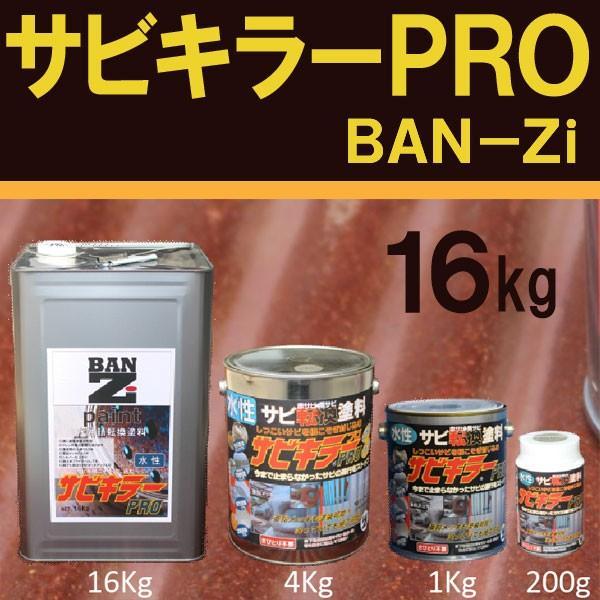 サビキラーPRO 【16kg シルバー】 BAN·ZI バンジ