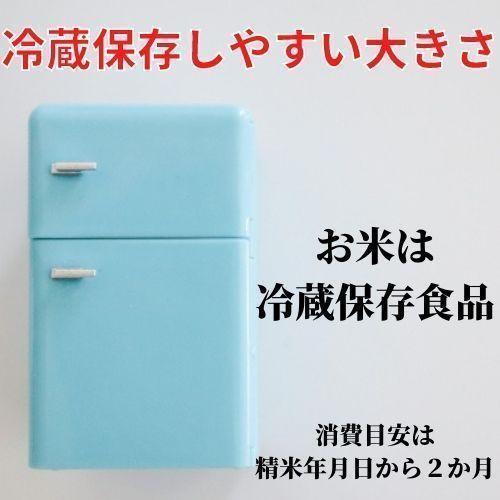 精米済 10kg 茨城県産コシヒカリ 寿米流(すまいる)|toyosakiya|14