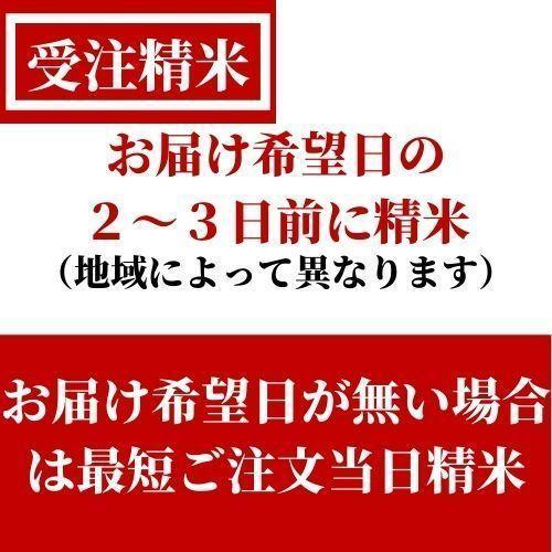 精米済 10kg 茨城県産コシヒカリ 寿米流(すまいる)|toyosakiya|15