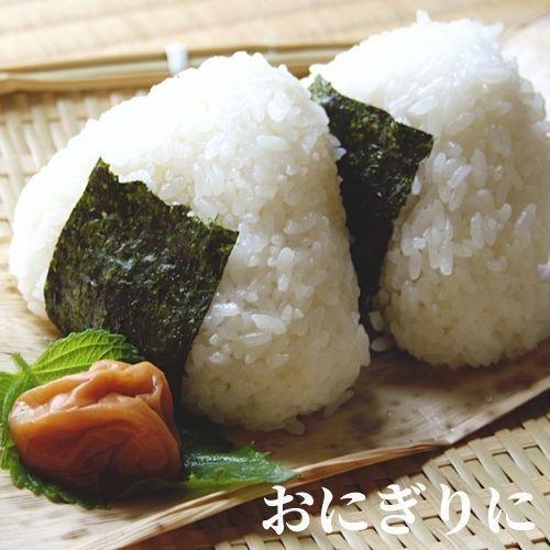 精米済 10kg 茨城県産コシヒカリ 寿米流(すまいる)|toyosakiya|04