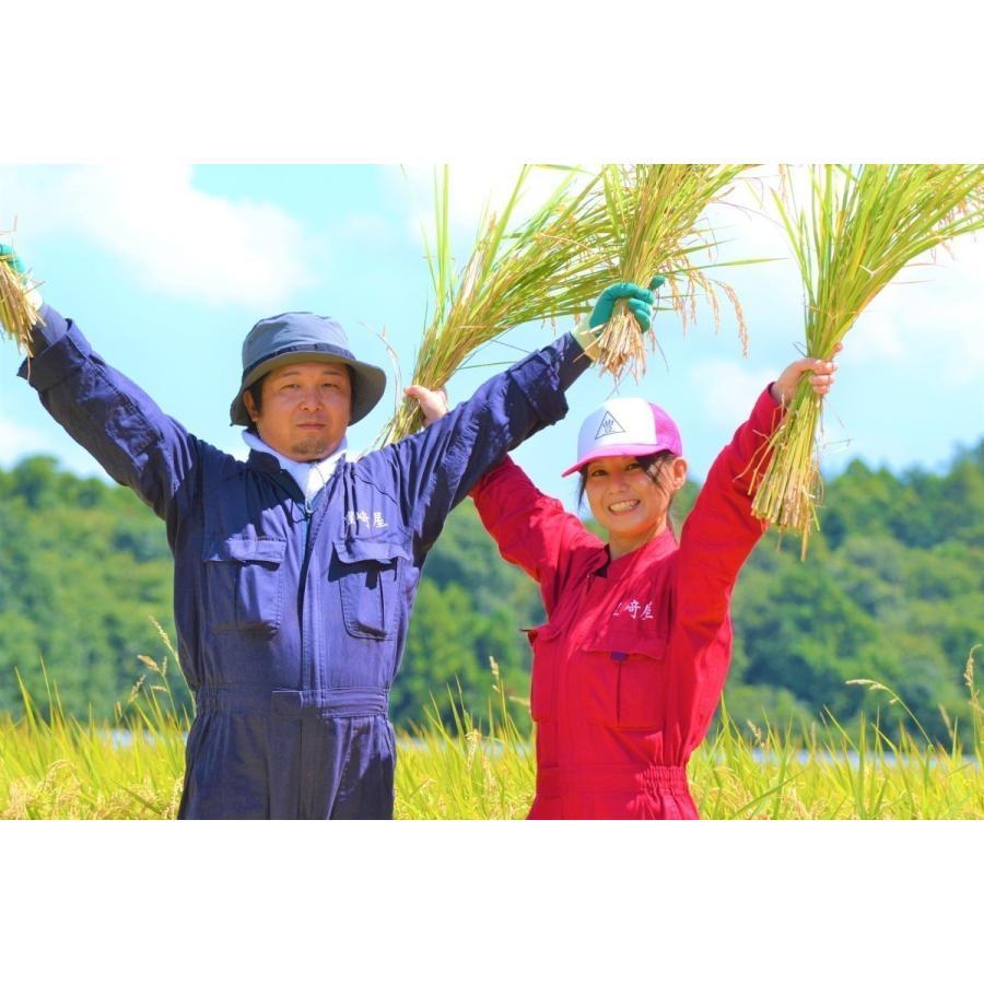 精米済 10kg 茨城県産コシヒカリ 寿米流(すまいる)|toyosakiya|09