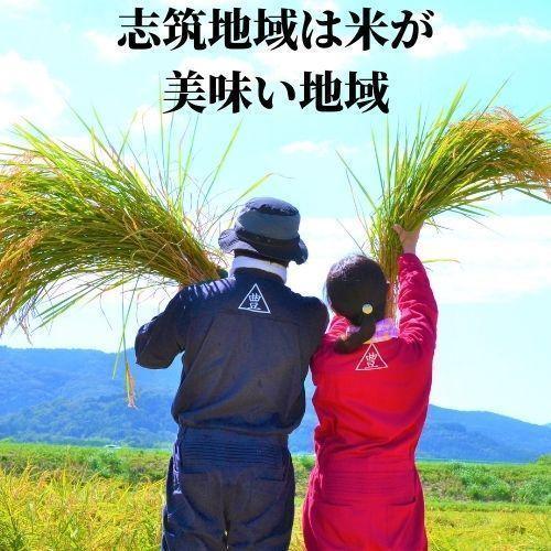 精米済 10kg 茨城県産コシヒカリ 寿米流(すまいる)|toyosakiya|10