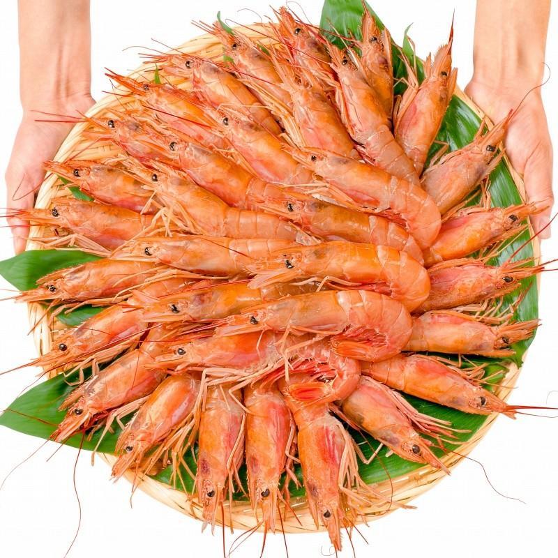海鮮浜焼き 4種セット 海鮮バーベキューセット 北海道産ほたて10枚 かにみそ甲羅盛り2個 いかおやじ串10本 特大赤海老20尾 BBQセット|toyosushijou|05