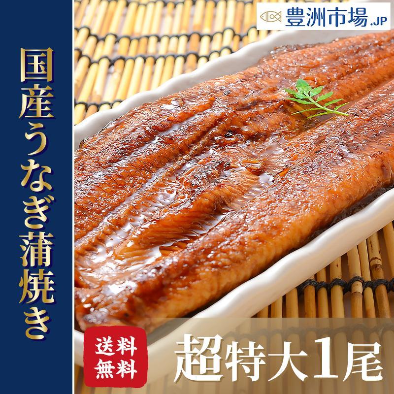 超特大 国産うなぎ蒲焼き 平均250g前後×1尾 タレ付き (国産 うなぎ ウナギ 鰻) toyosushijou