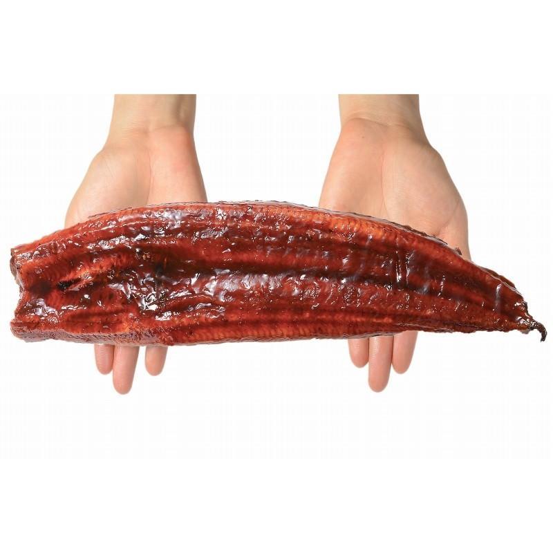 超特大 国産うなぎ蒲焼き 平均250g前後×1尾 タレ付き (国産 うなぎ ウナギ 鰻) toyosushijou 16
