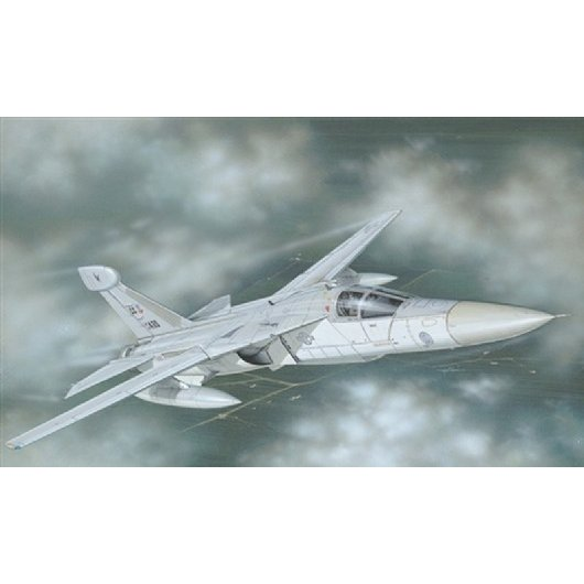 1/72 EF-111A レイブン(1235) [イタレリ]