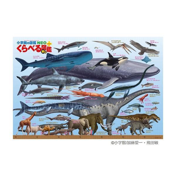 学べるジグソーパズル 300ラージピース くらべる図鑑(新版) 巨大生物大きさくらべ B61-420 代引き不可