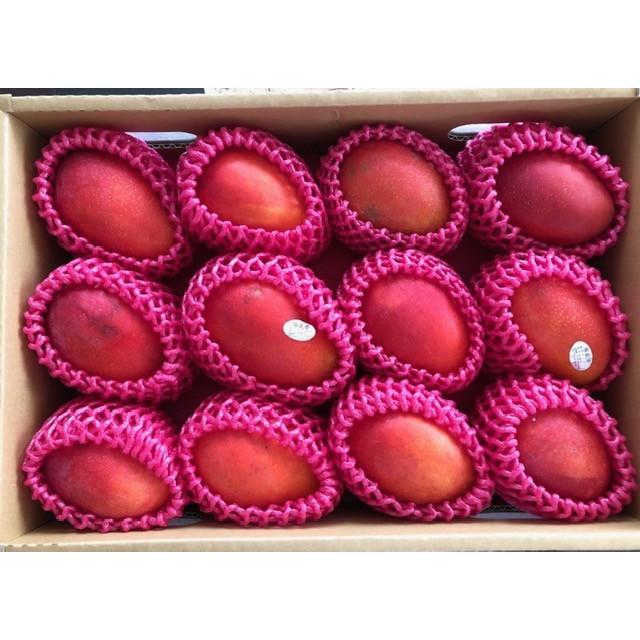 台湾産 アップルマンゴー 約5.0kg 大玉10個/12個入り(アーウィン種) tropical-stream1 02