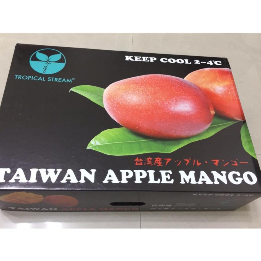 台湾産 アップルマンゴー 約5.0kg 大玉10個/12個入り(アーウィン種) tropical-stream1 04