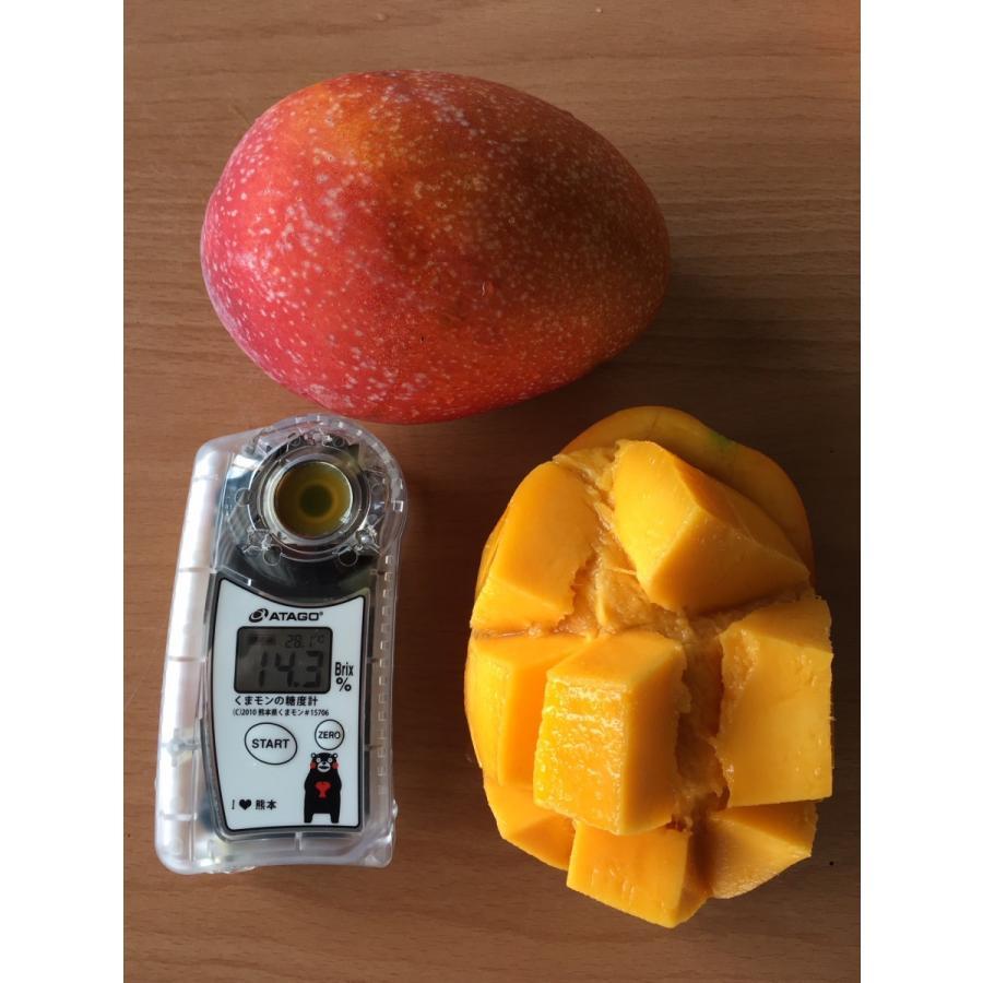 台湾産 アップルマンゴー 約5.0kg 大玉10個/12個入り(アーウィン種) tropical-stream1 05