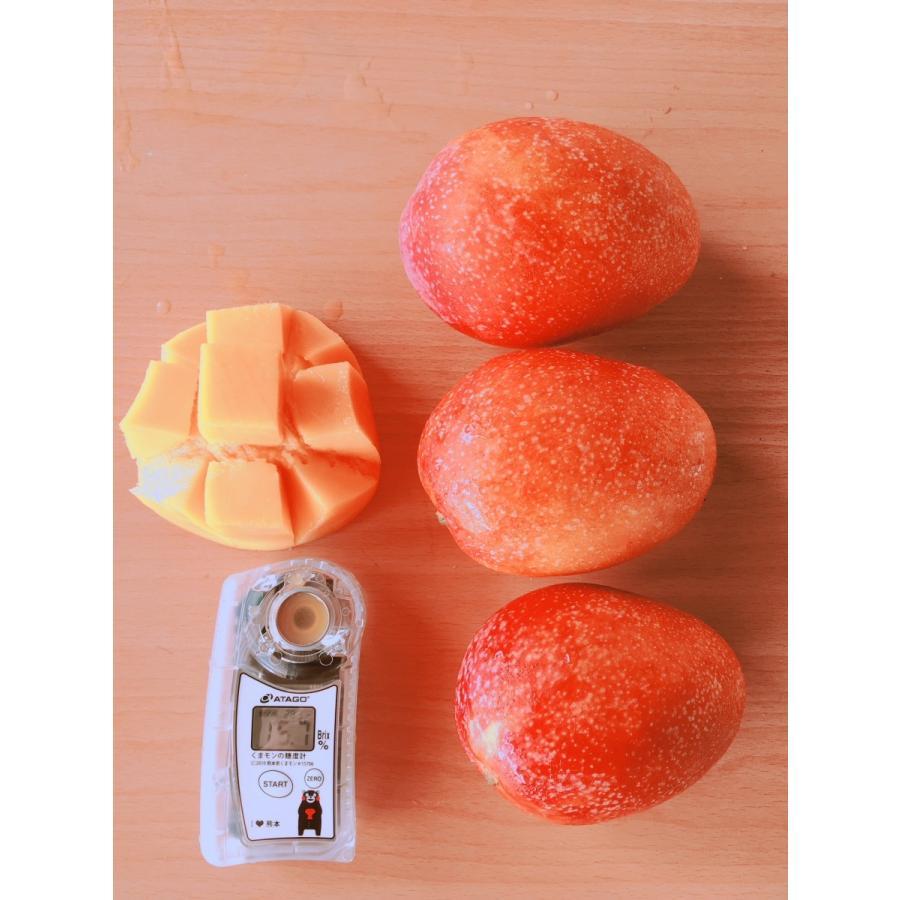 台湾産 アップルマンゴー 約5.0kg 大玉10個/12個入り(アーウィン種) tropical-stream1 06