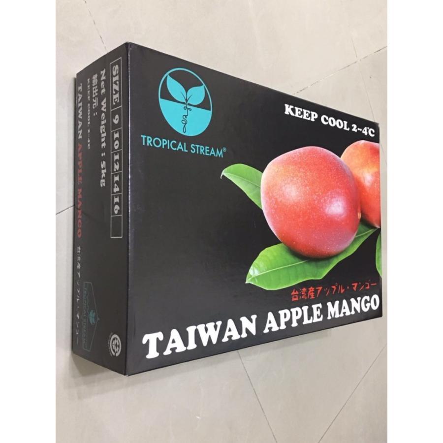 台湾産 アップルマンゴー 約5.0kg 大玉10個/12個入り(アーウィン種) tropical-stream1 07