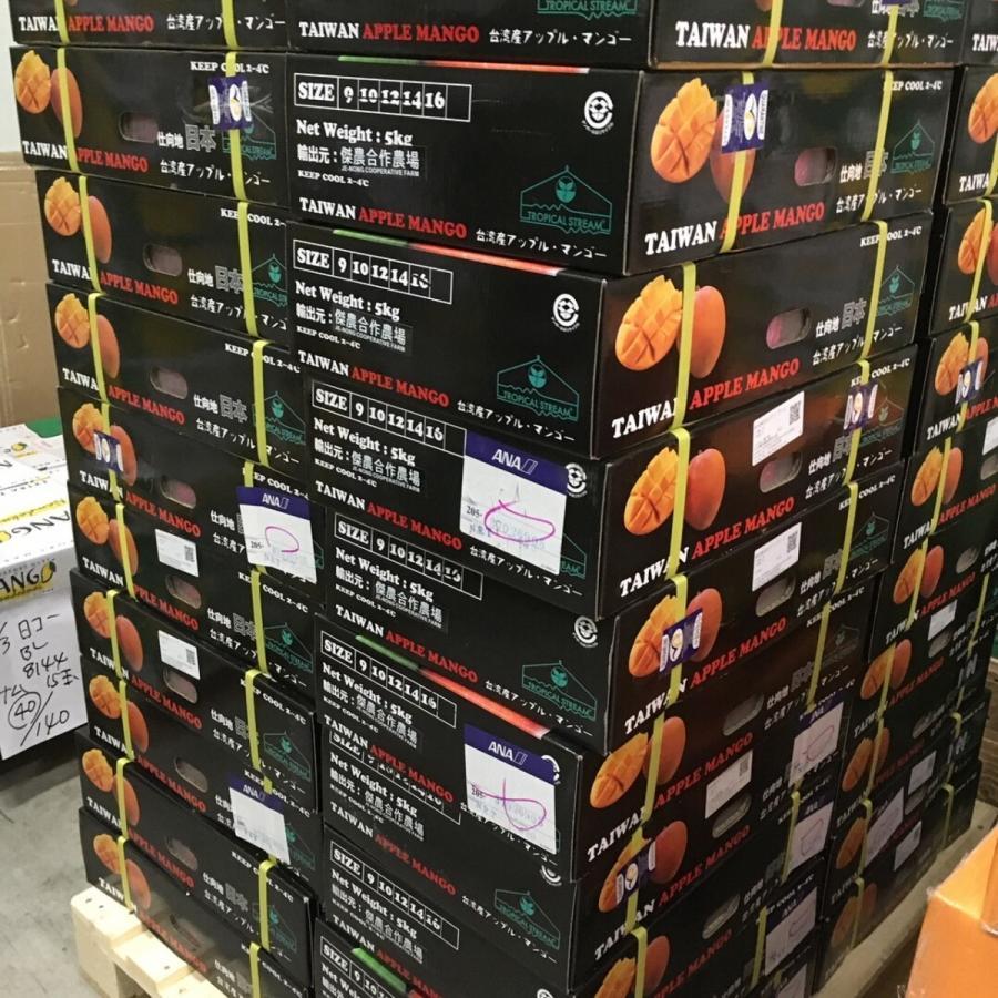 台湾産 アップルマンゴー 約5.0kg 大玉10個/12個入り(アーウィン種) tropical-stream1 09