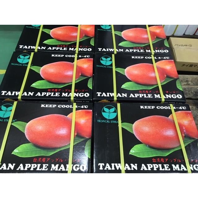 台湾産 アップルマンゴー 約5.0kg 大玉10個/12個入り(アーウィン種) tropical-stream1 10