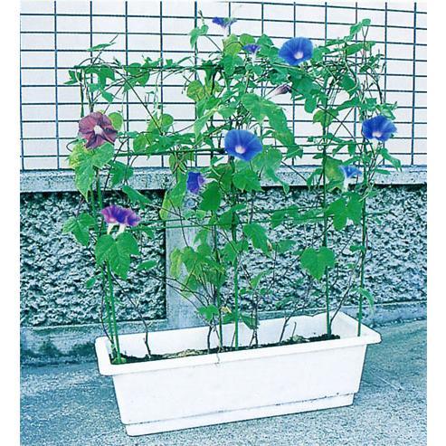 第一ビニール のびーる支柱 花のアーケード 卸売り 買取 プランター用