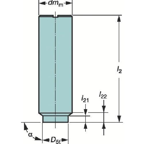 サンドビック コロミルEH円筒シャンクホルダ E20-A25-SS-080期間限定 ポイント10倍