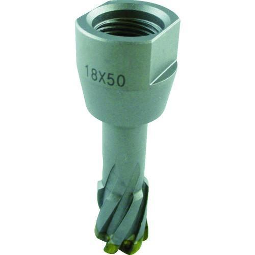 工機ホールディングス 株 HiKOKI スチールコア N 38mm T50 0031-6080 期間限定 ポイント10倍