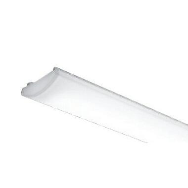遠藤照明 施設照明部材 LEDZ SDシリーズ メンテナンスユニット 電源内蔵 非調光タイプ 40Wタイプ 一般タイプ 昼白色 RAD-766N