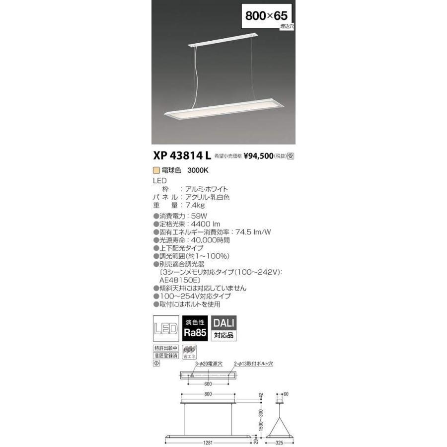 コイズミ照明 施設照明 cledy LPシリーズ LEDベースライト ペンダントタイプ 電球色 FLR40W×2クラス 調光 XP43814L