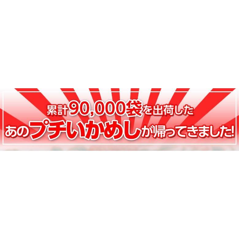 いかめし 北海道函館加工 釜揚げ プチいかめし 1尾約50g×4パック入 ゆうパケット 常温 送料無料|tsukiji-ichiba2|02