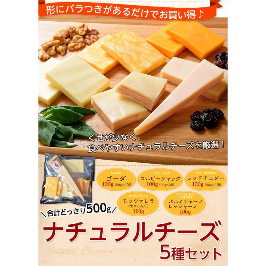 チーズ 訳あり 不揃い ナチュラルチーズ5種セット 500g おつまみ 冷凍同梱可 冷凍 送料無料 tsukiji-ichiba2 02