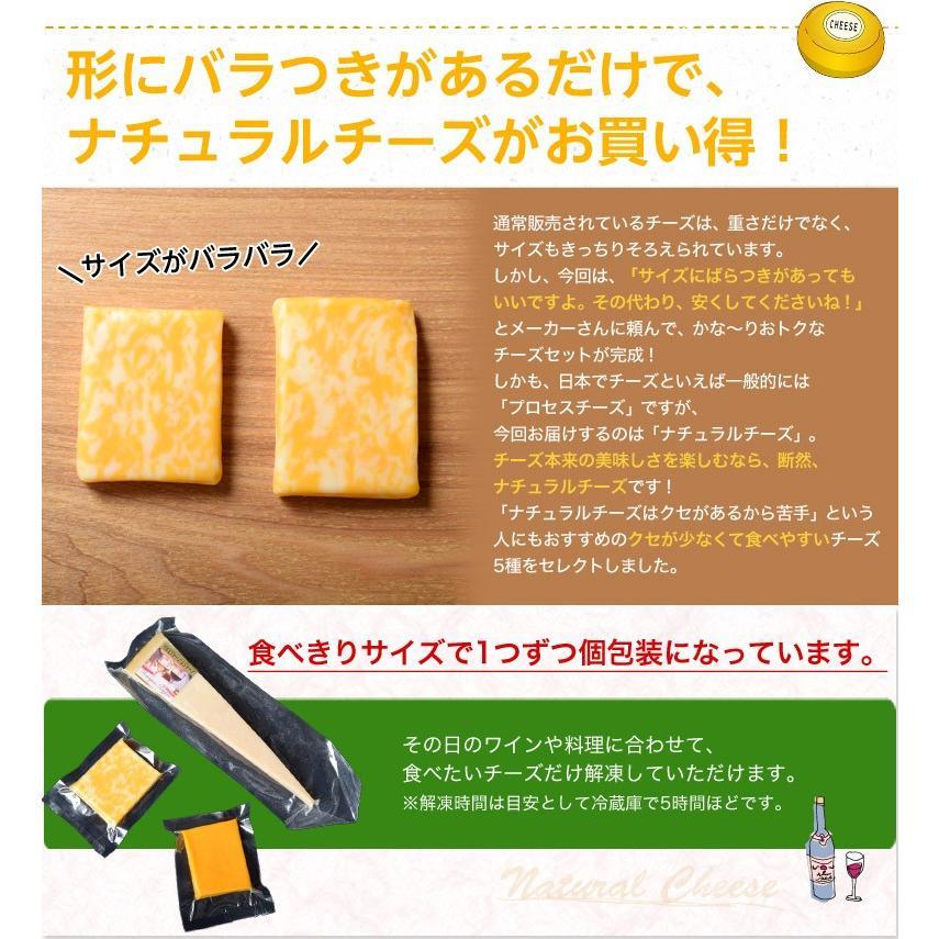 チーズ 訳あり 不揃い ナチュラルチーズ5種セット 500g おつまみ 冷凍同梱可 冷凍 送料無料 tsukiji-ichiba2 03