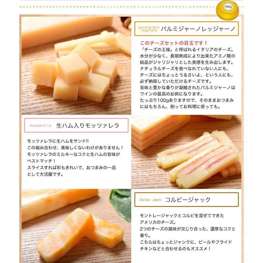 チーズ 訳あり 不揃い ナチュラルチーズ5種セット 500g おつまみ 冷凍同梱可 冷凍 送料無料 tsukiji-ichiba2 04