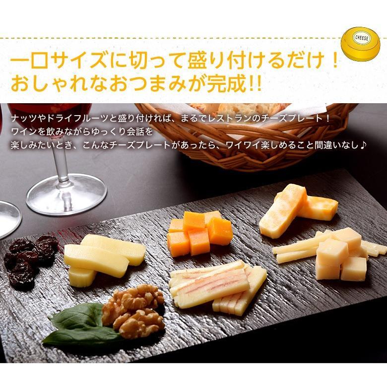 チーズ 訳あり 不揃い ナチュラルチーズ5種セット 500g おつまみ 冷凍同梱可 冷凍 送料無料 tsukiji-ichiba2 06