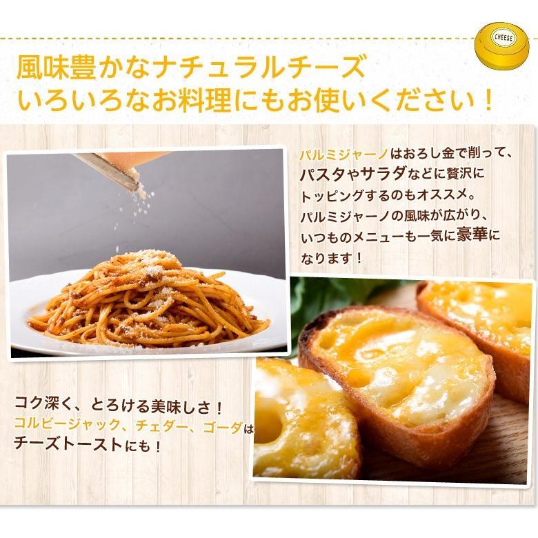 チーズ 訳あり 不揃い ナチュラルチーズ5種セット 500g おつまみ 冷凍同梱可 冷凍 送料無料 tsukiji-ichiba2 07