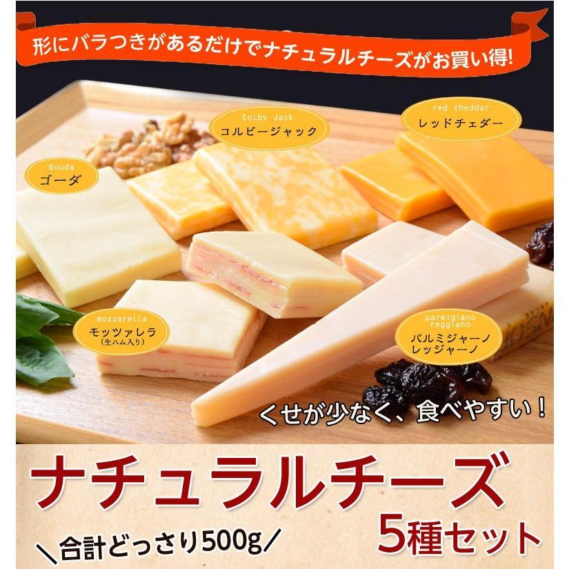 チーズ 訳あり 不揃い ナチュラルチーズ5種セット 500g おつまみ 冷凍同梱可 冷凍 送料無料 tsukiji-ichiba2 08